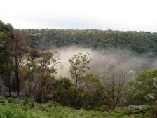 Fog spreading along the river